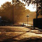 morning gold by greeneyedlady