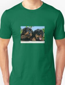 Two Rottweiler Puppies, High Five T-Shirt