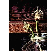 country flowers Photographic Print