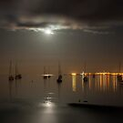 On Moonlit Bay by Ian Creek