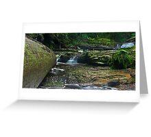 Snug River #30 Greeting Card