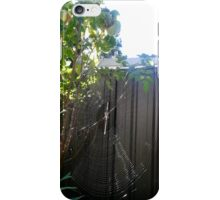 Sunlight through a Spider Web iPhone Case/Skin