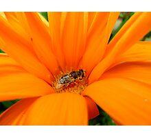 Orange Explosion Photographic Print