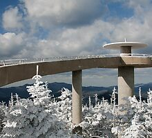 Clingman's Dome by William C. Gladish