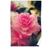 Pink Gem Poster