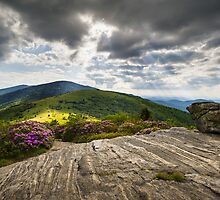 Blue Ridge Mountains Landscape - Roan Mountain Appalachian Trail NC TN by Dave Allen