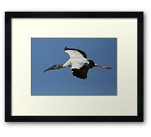 Blue Skies Were Made for Soaring Framed Print