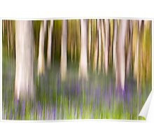 Bluebell Wood Abstract Poster