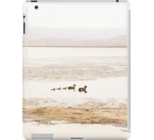 Ducks on a peaceful lake iPad Case/Skin