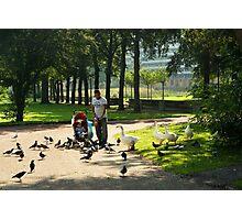 Come, birdies, come!  Photographic Print