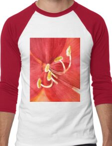 Amaryllis I Men's Baseball ¾ T-Shirt