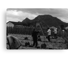 BW China Guilin watering with liquid manure 1970s Canvas Print