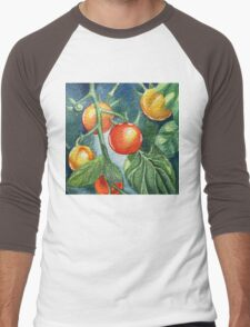 Cherry Tomatoes Men's Baseball ¾ T-Shirt