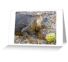 Land iguana 5. Greeting Card