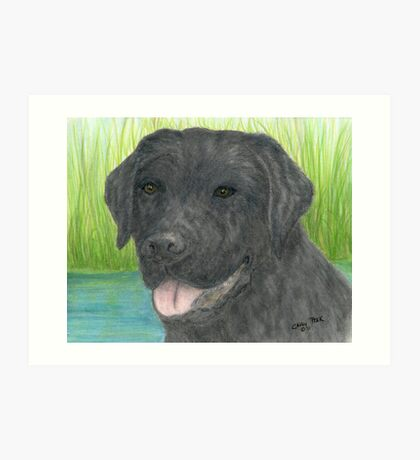 Black Labrador Dog Art Portrait Canine Pet Lab Art Print