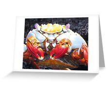 Sally lightfoot crab 1. Greeting Card