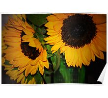 Bright Sunflowers Poster