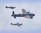 BBMF Over Shoreham  by Colin  Williams Photography