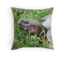 Giant tortoise 2. Throw Pillow