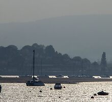 Evening on the Exe by DavidCH