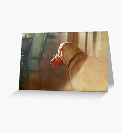Helinka I Greeting Card