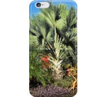 A Front Yard Jumble iPhone Case/Skin