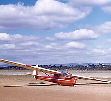 ES49 2 seater Sailplane. Gawler, South Australia, 1960. by johnrf