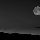 Bad Moon Rising by Anita Schuler