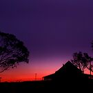 A Country Silhouette - Near Dalby Qld Australia by Beth  Wode