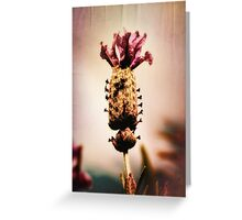 heaven scent Greeting Card