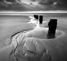 Reach for the Sea BW by Andy F