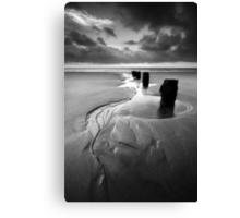 Reach for the Sea BW Canvas Print