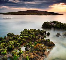 Anna Bay Afternoon  by Michael Howard