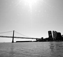 San Francisco Landscape by luciaferrer