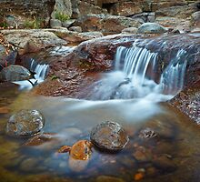 New Town Rivulet #10, Tasmania by Chris Cobern