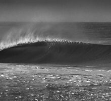 The Perfect Left Wave by Mark Piovesan