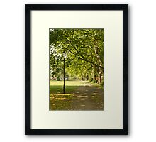 Summer in the Common Framed Print