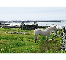 Irish West Coast Rural Scene Photographic Print