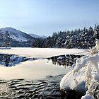 Loch an Eilien, Aviemore by Andrew Glover