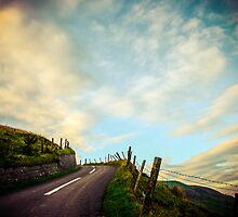 Road to Heaven - Ireland by Timothy Denehy