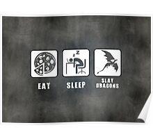 Eat, Sleep, Slay Dragons - Landscape Poster Poster