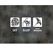 Eat, Sleep, Slay Dragons - Landscape Poster Photographic Print