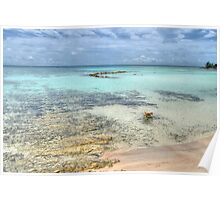 Low tides at Yamacraw Beach in Nassau, The Bahamas Poster
