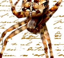 Spider Letter  Sticker