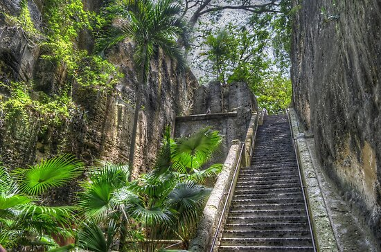 Queen's Staircase in Nassau, The Bahamas by 242Digital
