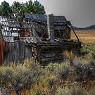 As Time Moves On by Charles & Patricia   Harkins ~ Picture Oregon