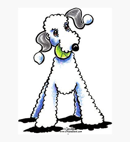 Bedlington Terrier Let's Play Photographic Print