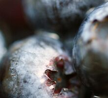♥ blueberries by Gregoria  Gregoriou Crowe