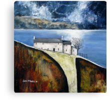 Moon light cottage Canvas Print