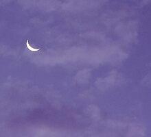 Lavender Moon by aprilann
